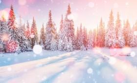【社内報の企画・ネタ】冬は人となりを知るチャンス!